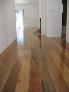 Spotted Gum - Rustic